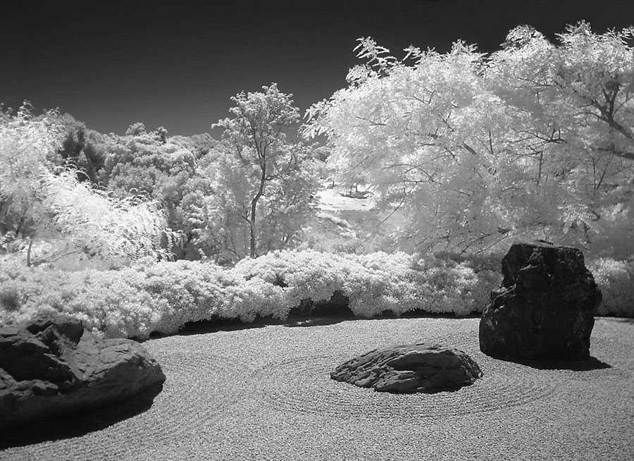 """Zen Rock Garden"" photo by Eric Platt, © 2008"