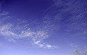 Tree Clouds photo image