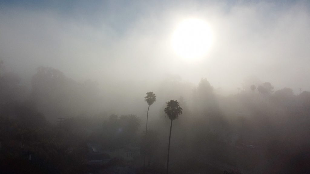image Morning Fog
