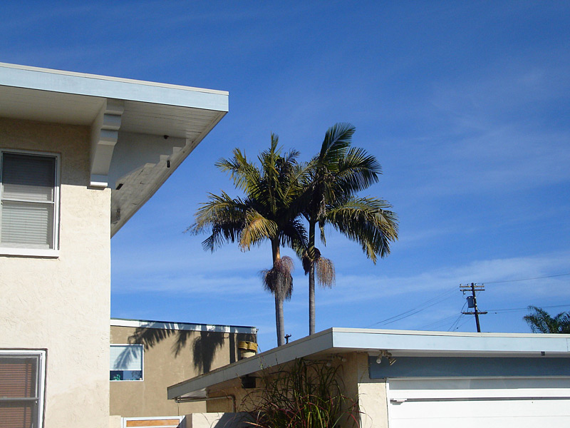 """Source photo of house for """"Mission Hills Palms"""" painting"""