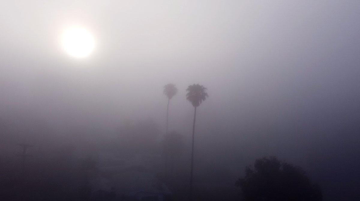 """""""Rising Though Morning Fog"""" ©2020 Eric Platt"""