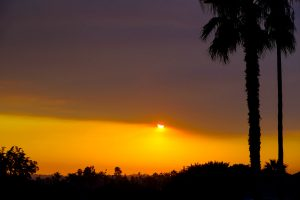 Visceral Sunset photo