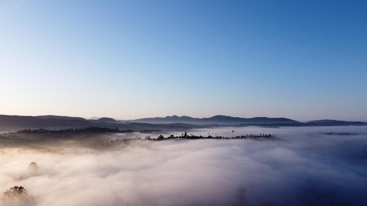 """""""Sea of Fog"""" ©2020 Eric Platt"""